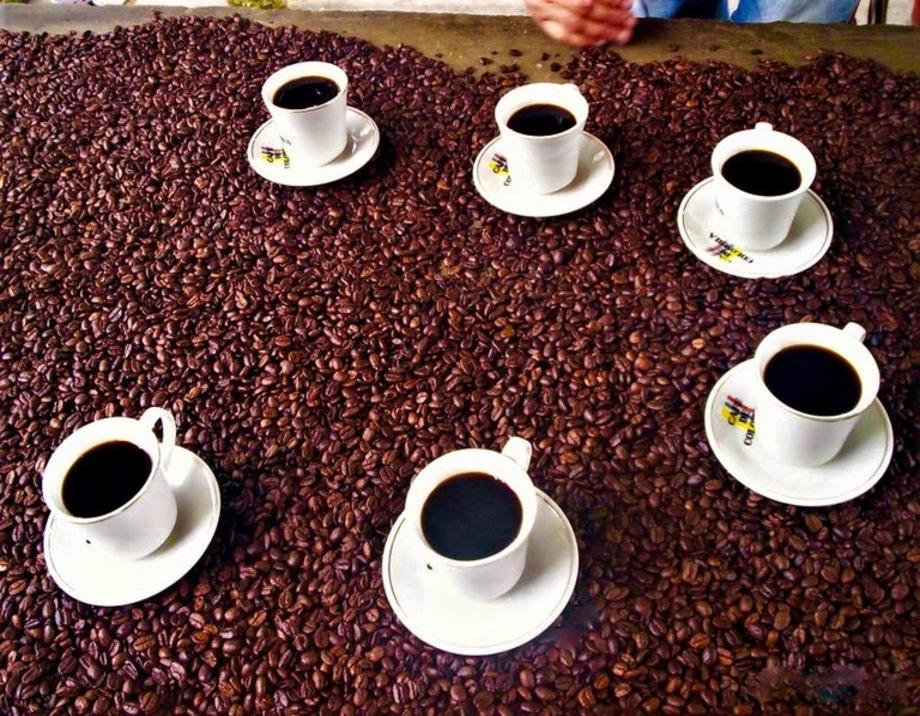 Café copia